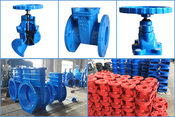 Resilient Seated Gate Valve Detail / Feature / Application