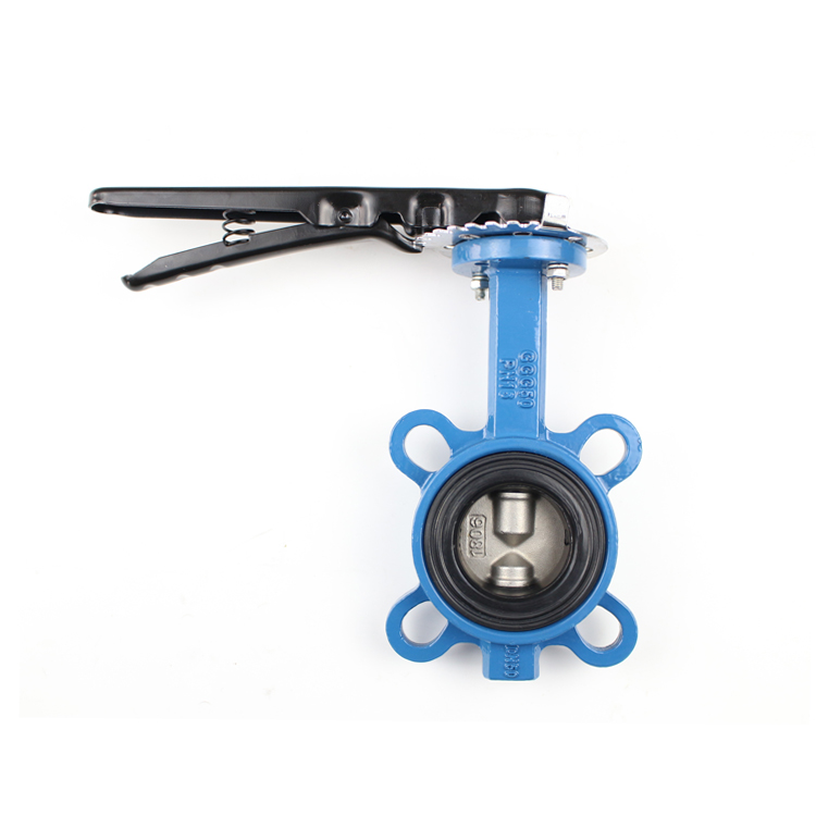 Double Shaft Butterfly Valve