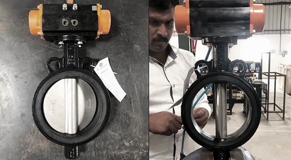 Indian Butterfly Valve