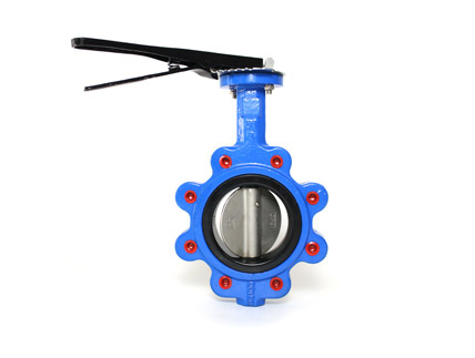 What is the Structure of the Lug Butterfly Valve?