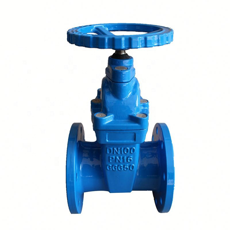 Wedge Gate Valve and Parallel Gate Valve