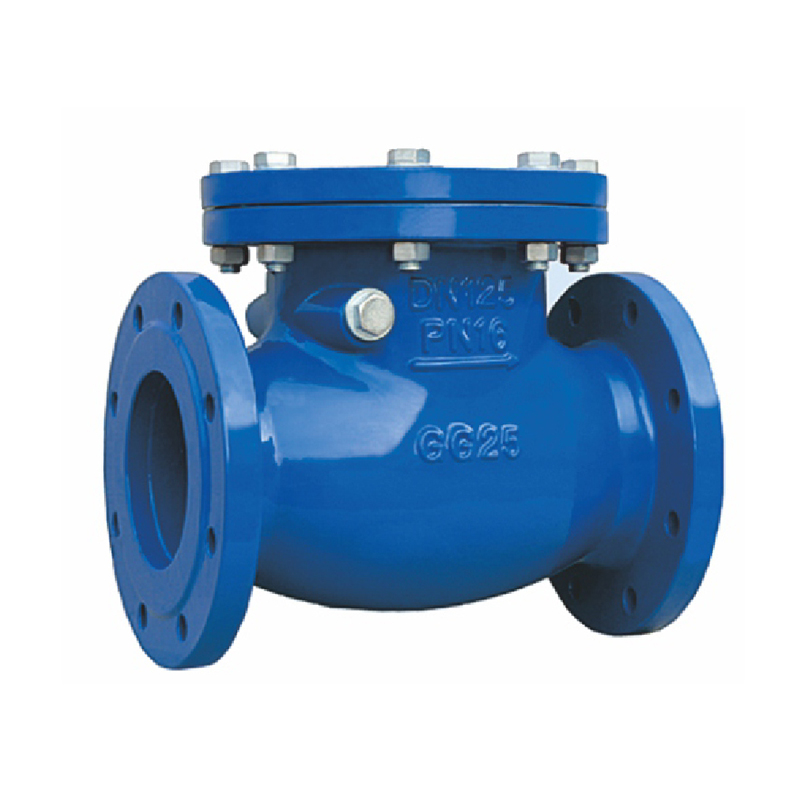 5 Different Types of Check Valves
